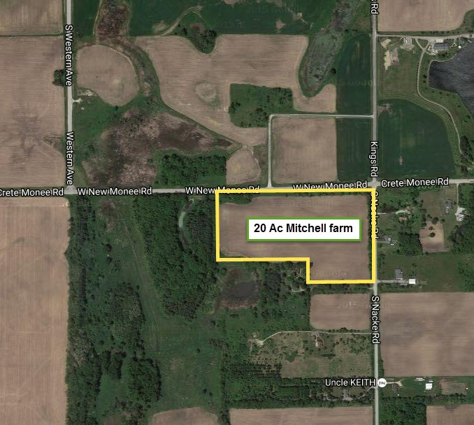 20 Ac Mitchell Monee Road in Crete Township