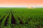Practical insights for successful farmland sales