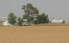 Growth in average U.S. farm real estate value slows