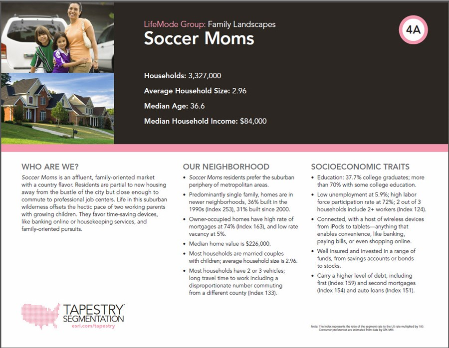 Tapestry Segmentation 2, Soccer Moms