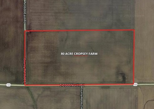 81 Acre Cropsey Farm
