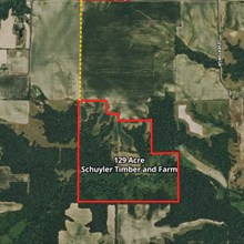 129 Acre Schuyler Timber and Farm Land