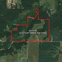253 Acre Schuyler Timber and Farm Land