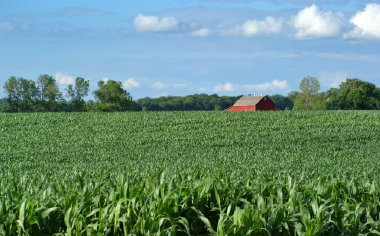 Goodwin & Associates Real Estate, LLC Services for Illinois farm, commercial, development, residential real estate